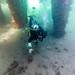 Underwater at Blairgowrie Pier-70