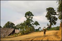 (Cheumou Phildroso) Tags: longwa nagaland konyak buma india myanmar headhunters north east mon district bois wood road route