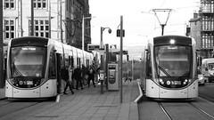 Tram Time 01 (byronv2) Tags: edinburgh edimbourg scotland blackandwhite blackwhite bw monochrome peoplewatching candid street saintandrewssquare newtown tram publictransport platform commuter