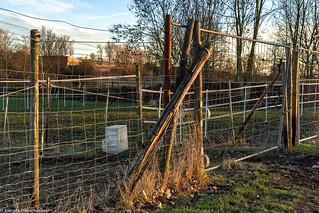 Fenced Friday - Pferdekoppel am Reitplatz