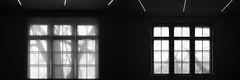 Two Windows (Novowyr) Tags: berlin hamburgerbahnhof gallery windows diptych blackandwhite trees stem trunks schemes shilouettes diptychon schwarzweis museum galerie bäume stamm schatten shadow silhouette äste branch dark