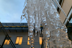 eisschwerter (dadiolli) Tags: haidhausen munich münchen germany eis ice eiszapfen winter