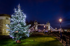 Merry Christmas and a Happy New Year (Daniel Coyle) Tags: merrychristmas happychristmas happynewyear newyear christmas christmaslights christmastree tree towerbridge towerbridgenight london londonnight londonbluehour bridge londonbridge towerhill river riverthames thames riverbank toweroflondon night nightphotography nightshot nightonearth nikon nikond7100 d7100 danielcoyle uk england