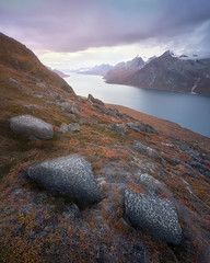 Three Pebbles (ansharphoto) Tags: adventure arctic autumn beautiful blue climbing clouds coast cold dusk evening exploration extreme fjord granite grass greenland hiking landmark landscape leaves moss mountain nature orange outdoor peak polar range red reflection rocks sky smooth south still stones summit sunset surface tasermiut tourism tranquility travel trekking vacations view water wild wilderness