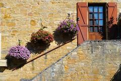 La dordogne (geraldineh.dutilly) Tags: france stairs flowers spring dordogne