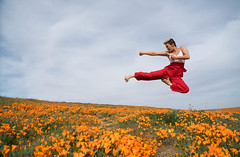 Shooting with JuJu Chan - Antelope Valley Poppy Reserve, California (ChrisGoldNY) Tags: chrisgoldphoto chrisgoldny chrisgoldberg forsale licensing california southerncalifornia antelopevalley poppyreserve superbloom spring april flowers floral flower orange poppy poppyfields field fields jujuchan portrait people women martialartist actress chinese hongkong asian star martialarts jump midair athlete badass cool punch kick karate sonyimages sonyalpha sonya7rii