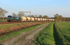 Lineas 513-10 @ Staphorst (Sicco Dierdorp) Tags: lineas class66 51310 livrei dolime dolomiet nedmag meppel zwolle staphorst veendam hermalle