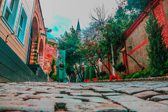 أزقة منطقة الغولهانا - اسطنبول (osamahadba) Tags: turkey istanbul color colors alley street trees tree house houses mosque stone stones windows sky cloud clouds redflower