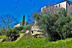 La ruche de Venezobre (rolyams) Tags: bee sky garden blue green pierre cévennes jardin ruche geante olivier batisse arbre vézénobre
