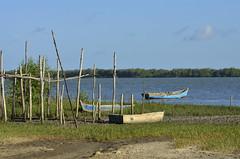 Toda a paz de Ponta de Areia (Márcia Valle) Tags: boats barcos caravelas bahia amoaabahia brasil brazil márciavalle verão summertime sun sol mar sea seascape nikon d5100