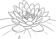 The Modern Rules Of Free Pretty Flower Coloring Pages | free pretty flower coloring pages (franklin_randy) Tags: pretty flowers free flower coloring pages for adults preschoolers pdf