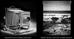 Deardorff at Pebble Beach 18123212 (jimhairphoto) Tags: deardorff 8x10 210mm sinaronlens america california coast seascape pdx portlandnw remainsoftheday naturalworld théâtrederue film 8x10film ilford fp4 blackandwhite blancetnoir schwarzeweiss blancoynegro blancinegre siyahrebeyaz jimhairphoto