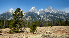The Teton Glacier... (Jersey JJ) Tags: the grand tetons teton glacier mountain mountains range snow capped wyoming landscape