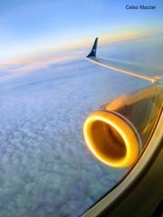 Embraer 195 - Azul Linhas Aéreas (celso.mazzei) Tags: azul air aeroporto avião aeronave aviação aerodromo aérea aircraft airplane aeronáutica aviation aeronautica airforce