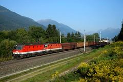 1144 230 + 1144 054, LGAG 48445. Mühldorf-Möllbrücke (M. Kolenig) Tags: 1144 rca baum wald berg tauernbahn