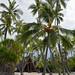 Honaunau Bay - Ancient Hawaian Refuge