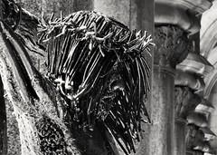 Cristo en la calle (carlos_ar2000) Tags: escultura sculpture estatua statue dof arte art calle street metal cristo christo montevideo uruguay