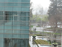IMG_2672 (earthdog) Tags: 2019 canon powershot sx730hs canonpowershotsx730hs work office sanjose building