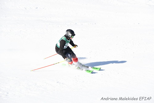 Alpine Races I & II Feb 2019_03