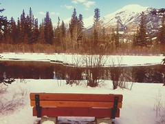 hbm .... (Mr. Happy Face - Peace :)) Tags: bench mondaybench art2019 happybenchmonday rockies albertabound canmore alberta snow river hiking forest trees sky cloud snowcaps experience cans2s