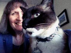 Me & Izzy Craquelure (Donna's View) Tags: cellphone phonepic cat selfie siamesecat photoshop photoshopapp craquelureapp
