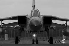 46+54 German Air Force (Luftwaffe) Panavia Tornado ECR (EaZyBnA - Thanks for 3.000.000 views) Tags: 4654 germanairforce luftwaffe panaviatornadoecr panavia tornadoecr panaviaecr natotigers specialcolorscheme tigermeet2017 taktischesluftwaffengeschwader taktlwg51 immelmann jagel ngc nato nrw nordrheinwestfalen natoflugplatz natoflugplatzgeilenkirchen natoairbase eazy eos70d ef100400mmf4556lisiiusm europe europa 100400isiiusm 100400mm canon canoneos70d warbirds warplanespotting warplane warplanes wareagles openday geilenkirchen geilenkirchenairbase airbasegeilenkirchen militärflugplatzgeilenkirchen etng gke military militärflugzeug militärflugplatz mehrzweckkampfflugzeug luftstreitkräfte luftfahrt kampfflugzeug flugzeug autofocus airforce aviation air airbase taxiway bundeswehr jet jetnoise bomber planespotter planespotting plane panaviatornado