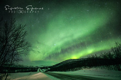 190306170335-5153-Edit (shannbil (Signature Exposures)) Tags: northernlights aurora auroraborealis finland norway winter shannonbileski signatureexposures shannbil landscape photography