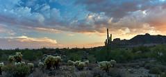 DSC00597_stitch (wNG555) Tags: 2014 arizona phoenix apachejunction apachetrail superstitionmountain sunset a6000 ilce6000 fav25 fav50