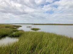 Fishing Galveston Island State Park, TX (- Adam Reeder -) Tags: y2019 m03 d24 lat290 lon950 galveston texas united states photo jpg apple iphone x fishing island state park tx