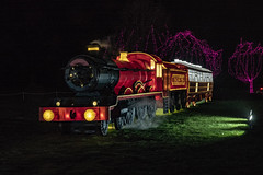 longleat train in vain (Mark Rigler -) Tags: longleat festival light display england south night shot time dark black fantastic voyage thrilling expedition space marvel wondrous scenes exotic glacial astonishing creatures magnificent scenery stunning structures transportation epic adventure