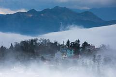 Sapa, Lao Cai, Vietnam (Hồ Văn Tìm) Tags: town mountain sky cloud forest beautiful vietnam sapa lao cai winter pine