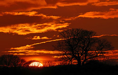Winter's sunset (PJ Swan) Tags: sunset winter orange red county durham england