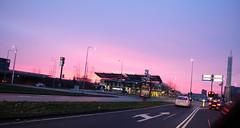 DSCF2617.jpg (amsfrank) Tags: paars worldoffood bijlmer worldoffoods winter amsterdam purple