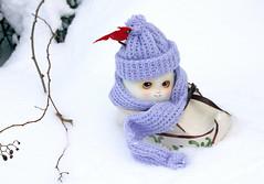 Snow day (bentwhisker) Tags: doll bjd resin soom neoangelregion humptydumpty anthro egg snow 5283