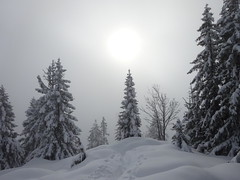Winter am Pendling (bookhouse boy) Tags: 2019 berge mountains alpen alps 1januar2019 thiersee schneeberg pendling kaltwasser kalaalm schnee snow winter thierseetal