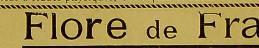 This image is taken from Commentaires théâÂÂ-rapeutiques du Codex medicamentarius [electronic resource] : ou, Histoire de l'action physiologique et des effets théâÂÂ-rapeutiques des méâÂÂ-dicaments inscrits dans La p
