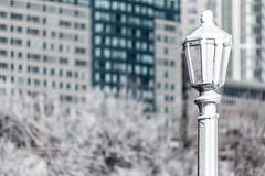 Frozen in Niagara (HisPhotographs.com) Tags: niagarafalls frozen cold winter snow white ice niagara falls buildings architecture city town hotel hotels condos trees bokeh lamp light post ontario canada