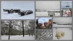 Winter in January (wilma HW61) Tags: january winter vinter hiver inverno sneeuw snow schnee collage photoborder natuur nature natur naturaleza nederland niederlande netherlands holland holanda paysbas paesibassi paísesbajos europa europe wilmahw61 wilmawesterhoud outdoor details tree park zwolle overijssel
