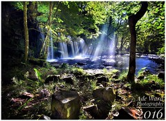 Rays of light (awardphotography73) Tags: cymru wales sunlight summer leaves scenery spiritual phototherapy nikon peace solace tranquility nature trees nationalpark brecon raysoflight waterfall water sgwdddwliuchaf