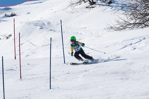 Alpine Races I & II 2019 3_02