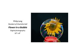 """Flower in a Bubble • <a style=""""font-size:0.8em;"""" href=""""https://www.flickr.com/photos/124378531@N04/46380890464/"""" target=""""_blank"""">View on Flickr</a>"""