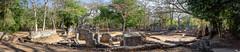 Gedi Ruins (wilhelm_vanrooyen) Tags: kenya nikon panorama landscape gedi ruins