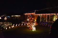 DSC_4864 (earthdog) Tags: 2018 needstags needstitle nikon nikond5600 d5600 18300mmf3563 christmas decoration light christmaslight sanjose willowglen