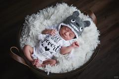 Victoria Newborn Shoot (davidgevert) Tags: newborn newbornportrait portraitphotography newbornphotography baby infant cute kawaiibaby cutebaby strobist godox ad200 ocf offcameraflash octabox homestudio davidgevert gevertphotography nikond850 d850 nikon50mmf18g