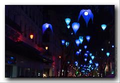 _18M1366 (Philippe Mériot) Tags: 2018 69 8 8decembre decembre fete fetedeslumieres lumiere lumieres lyon france
