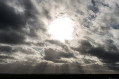 (CarolienCadoni..) Tags: sony sonyilcaa99m2 ilca99m2 tamron tamron28300mm sun sunbeams clouds
