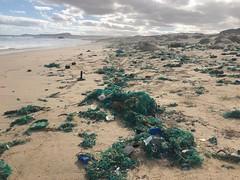 Boa Esperança1 (ilheuraso) Tags: boaesperança boavista bioscv turtle tartarugas sea caboverde caretta lixo plastic detrits