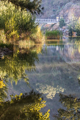 Cotter River reflections (Rod Burgess) Tags: act canberra cotter ruralareas reflections australiancapitalterritory australia au canon100400f4556lisii canoneos5dmarkiv
