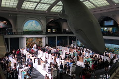 IMG_6145_p (thebiblioholic) Tags: 365 nycsef sciencefair whale amnh americanmuseumofnaturalhistory