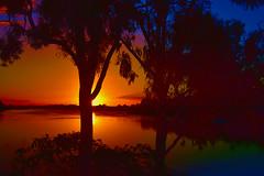 Fiery sunset (Dreaming of the Sea) Tags: gimp sunsetoverwater sun summer nikond7200 tamronsp2470mmf28divcusd sliderssunday burnettriver bundaberg queensland australia gumtree water reflections redsunset bluesky clouds hss